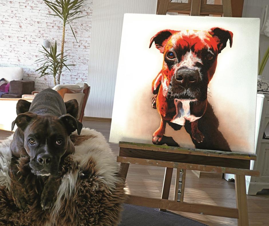 Hundeportraits von Jacqueline Kuhn alias JacquiHirsch