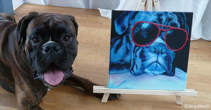 Hundeportrait Boxer auf Leinwand