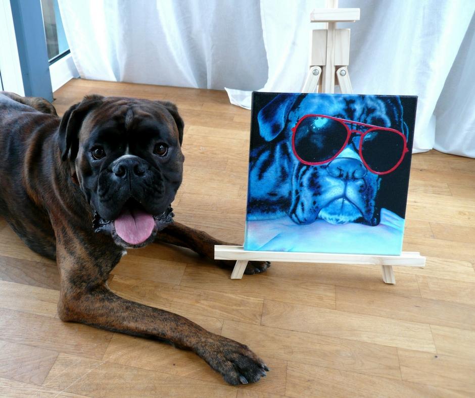 Hundeportrait Boxer in Acryl von Jacqueline Kuhn alias JacquiHirsch