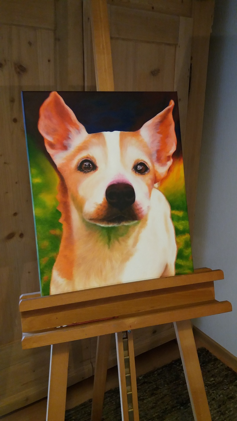 Hundeportrait Jack Russel aus dem Atelier Leben